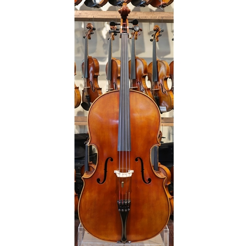 Christian Petersen Cello #8163 2006 Robertson & Sons